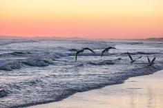Birubi Beach-3