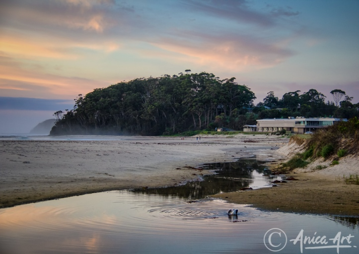 Mollymook Beach-020