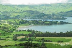 New Zealand - Dec 2011-13