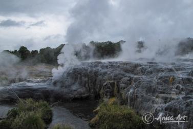 New Zealand - Dec 2011-17