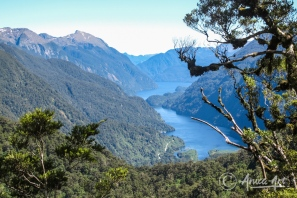 Looking down onto Doubtful Sound
