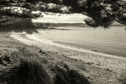 Mill Beach, Murramerang - South Durras