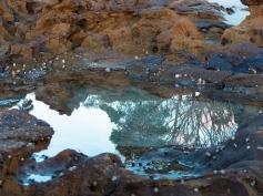 Reflections-at-Narrawallee-Beach
