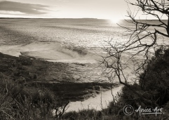 Sunrise off Bannisters Point Mollymook Beach in monochrome