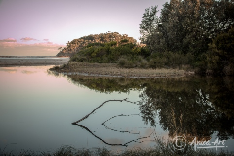 Sunset reflections at Blackwater Creek with branches in foreground