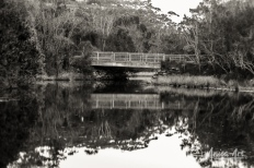 Bridge over Blackwater Creek - Mollymook in monochrome