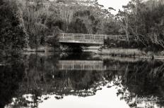 Bridge over Blackwater Creek - Mollymook in monochrome