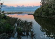Sunset at Blackwater Creek in Mollymook