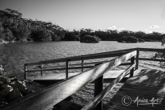 Ramp at Narrawallee Inlet