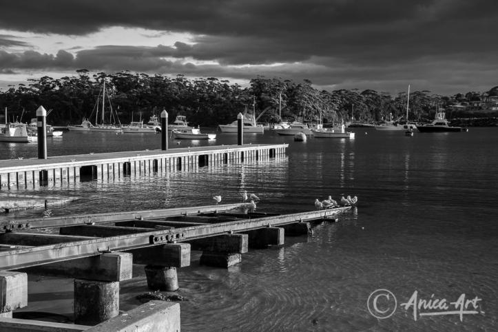 Ulladulla Harbour - black and white