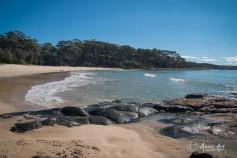 Bawley Point Beach -2
