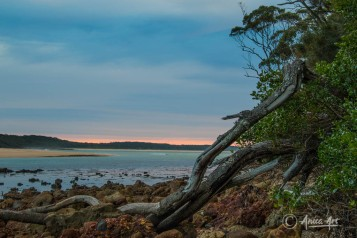 Narrawallee Inlet - sunrise