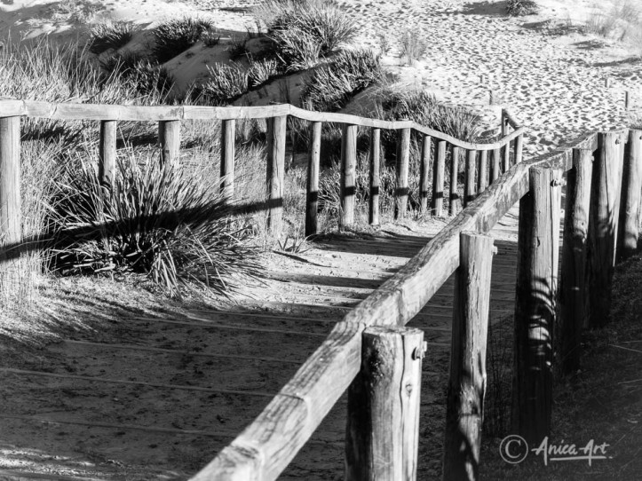 Sandy path and steps to Pretty Beach in monochrome