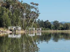 Burrill Lake -14