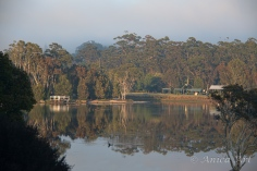 Burrill Lake -9