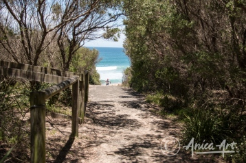 Path to Bendalong Beach