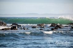 Early morning sunlit waves - Bendalong