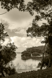Narrawallee Inlet in Sepia