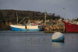 Ulladulla Harbour this afternoon-11