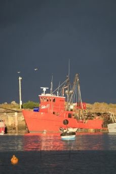 Ulladulla Harbour this afternoon-5