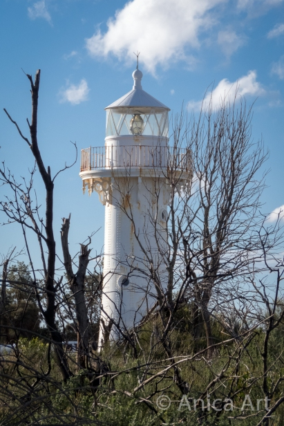 Ulladulla Lighthouse through scrub
