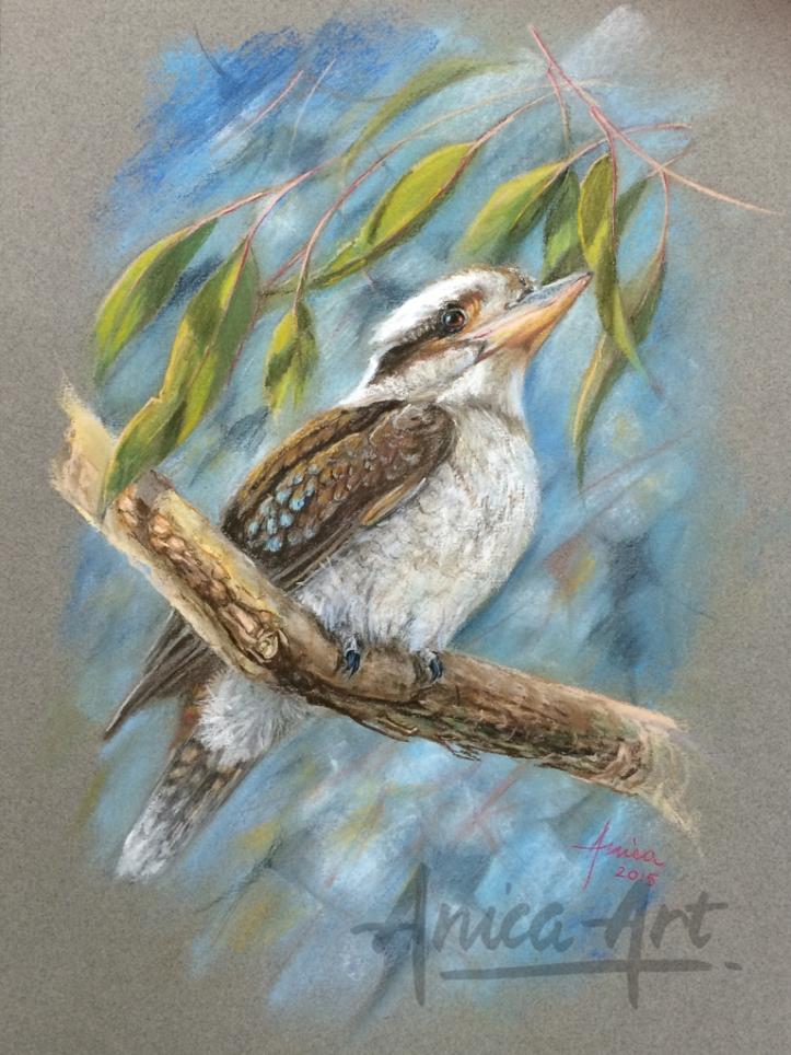 kookaburra pastel painting