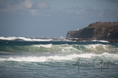 Mollymook Beach-lighthouse (4)