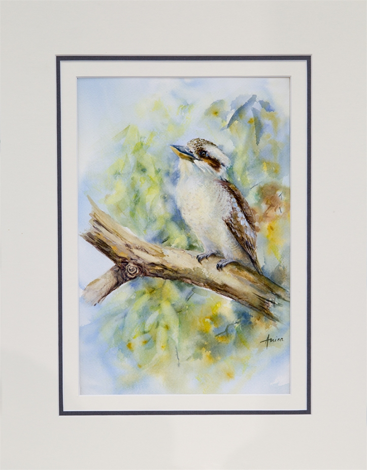 Watercolour painting of Kookaburra