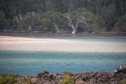 narrawallee-inlet-changing-light-5518