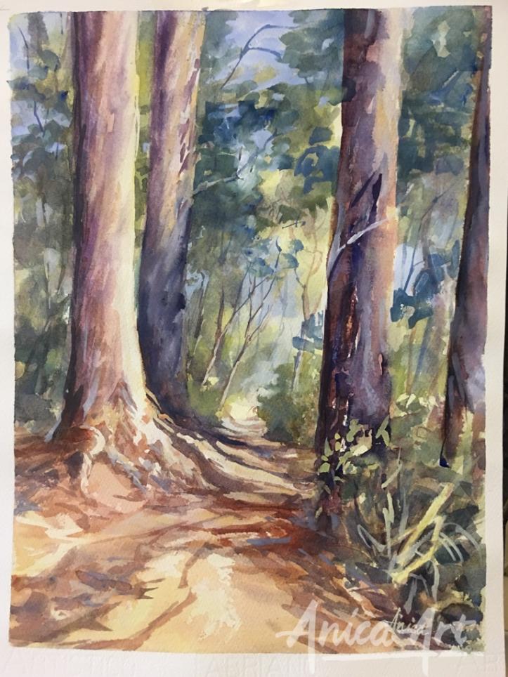 Bush track to Narrawallee Beach-
