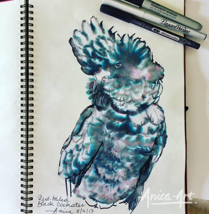 Black cockatoo-ink