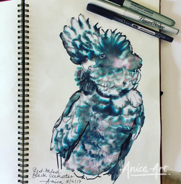 Black cockatoo-ink