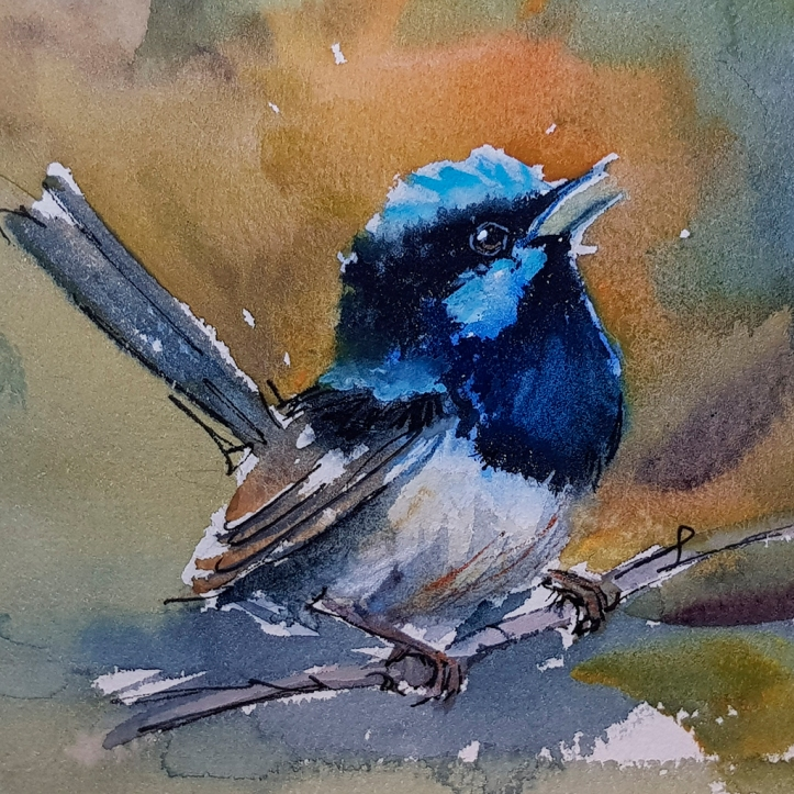Watercolour wren