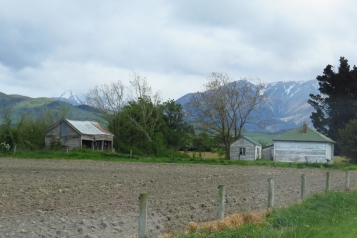 New Zealand 1600 (1)