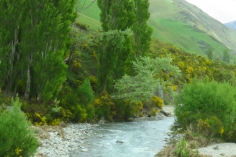 New Zealand 1600 (2)
