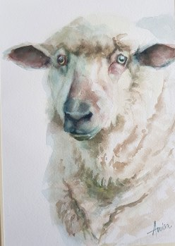 Sheep - final of 3